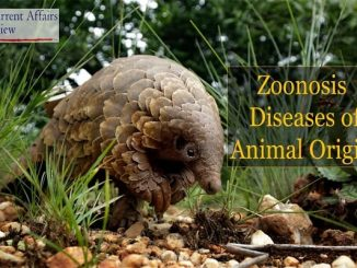 Zoonosis: Diseases of Animal Origin