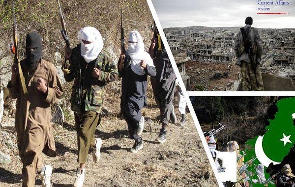 Pakistani state aparatus - and the counter terror strategies